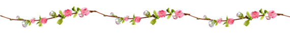 Guirnalda flores png